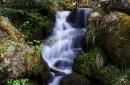 Gaishöll-Wasserfälle bei Sasbachwalden